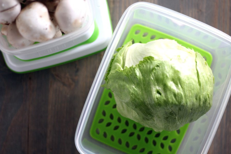 Lettuce and mushrooms in plastic Fresh Works storage containers