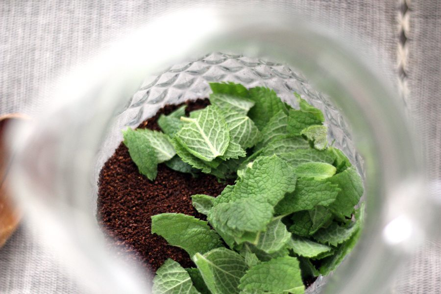 Coffee grounds, fresh mint in the bottom of a clear glass pitcher