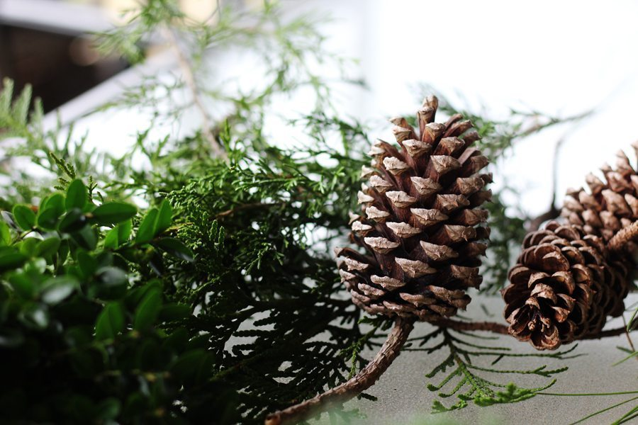 Take a little nature walk through your neighborhood for supplies to make this Christmas wreath for about 5 dolllars.