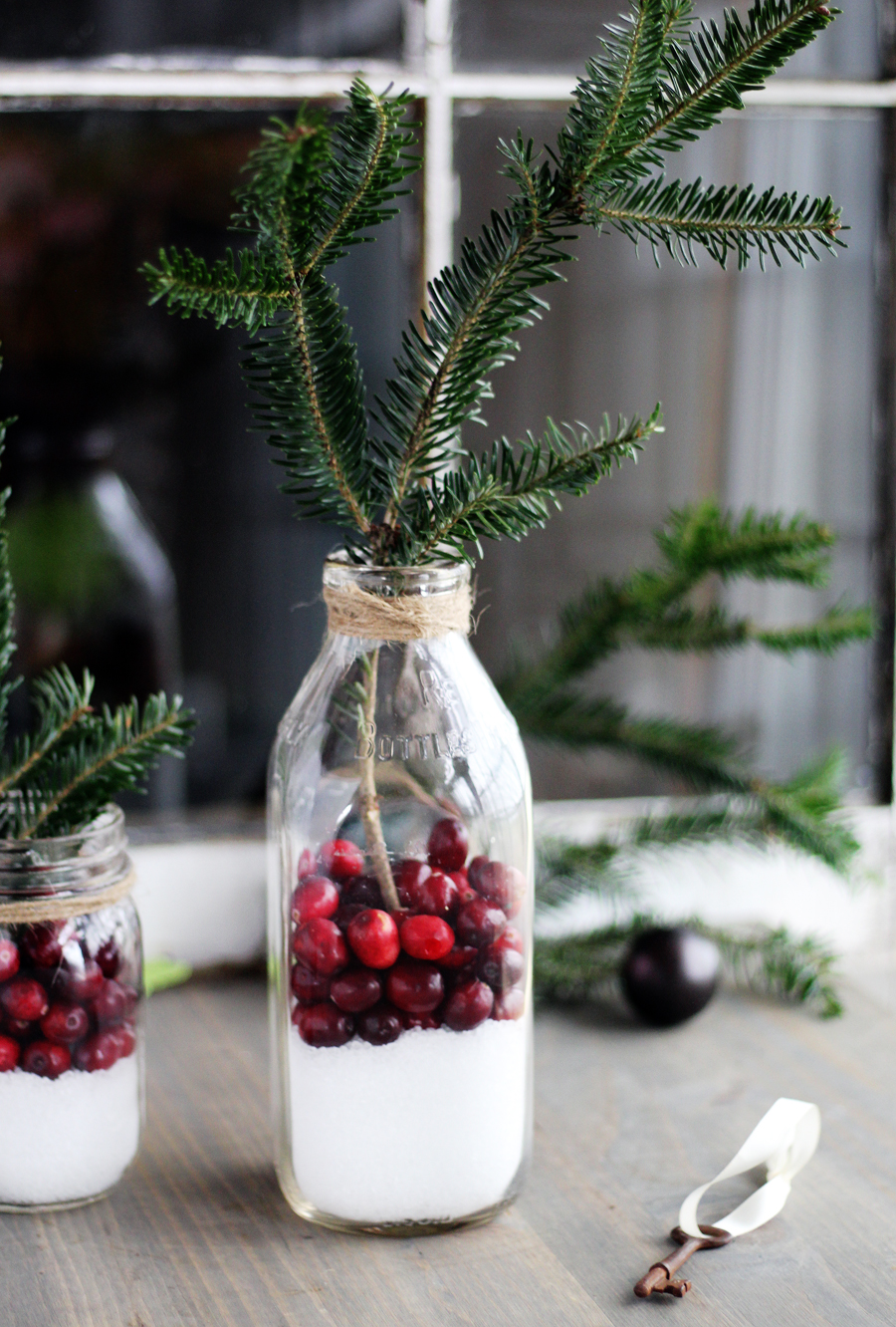 How To Make Cranberry Rustic Christmas Decor In 5 Minutes Buy This