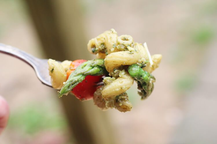 A fork full of pasta salad.