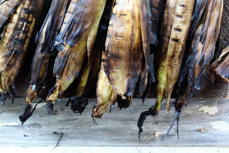 An overhead shot of several ears of corn on the cob that have been grilled in the husk