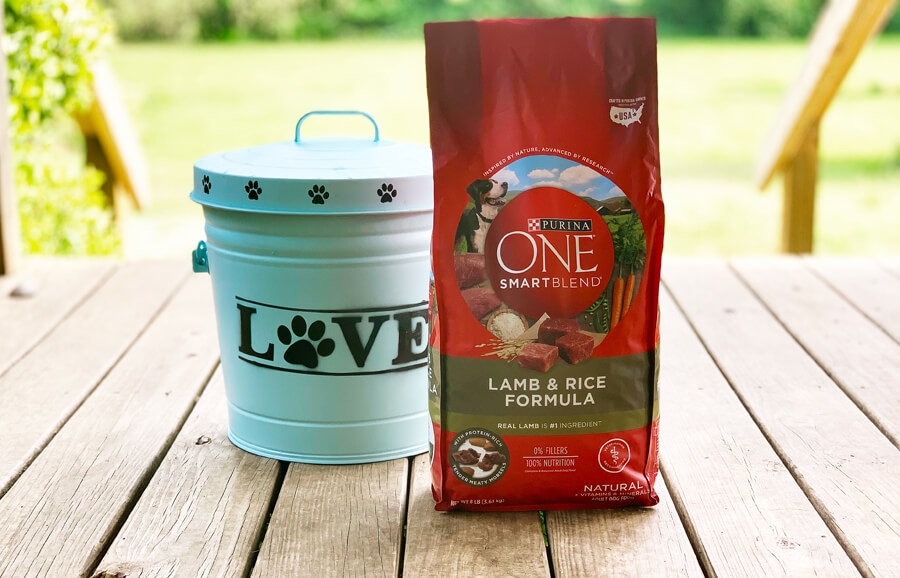 Make your own super-cute custom dog food container in just a few hours with our easy step-by-step tutorial.  Keeps the dogs out and the food fresh!